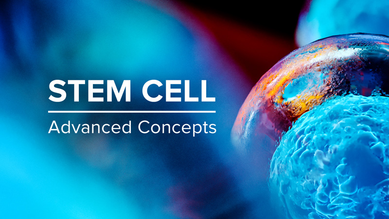 Stem Cell: Advanced Concepts
