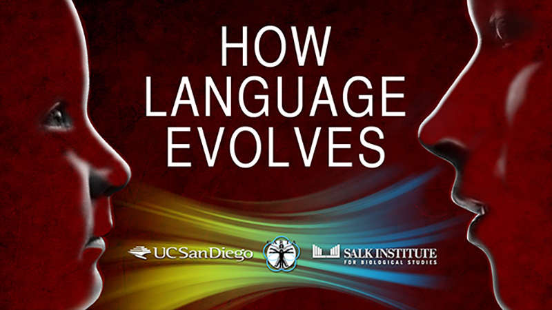 CARTA: How Language Evolves