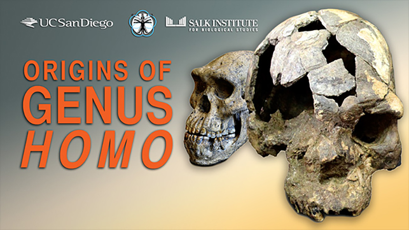 CARTA: Origins of Genus Homo