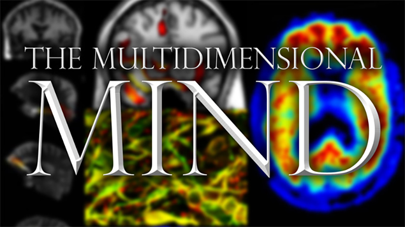 The Multi-dimensional Mind