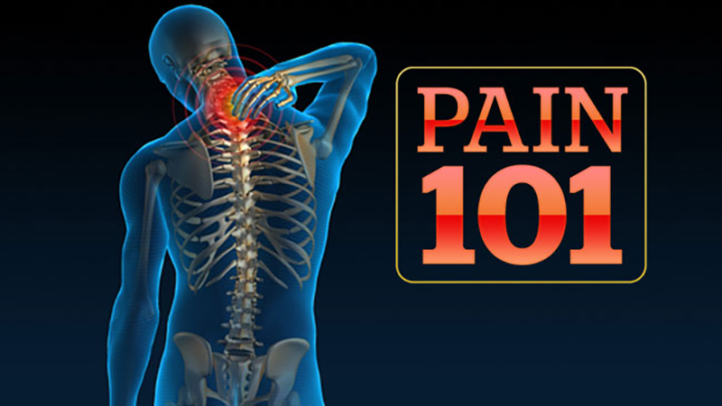 Pain 101: The Science, the Treatment, and the Impact -- Mini Medical School for the Public Presented by UCSF Osher Center for Integrative Medicine
